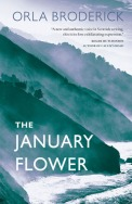the january flower