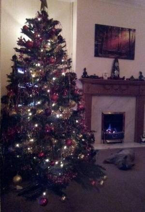 The Tree Before...
